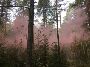 Red smoke bomb forest